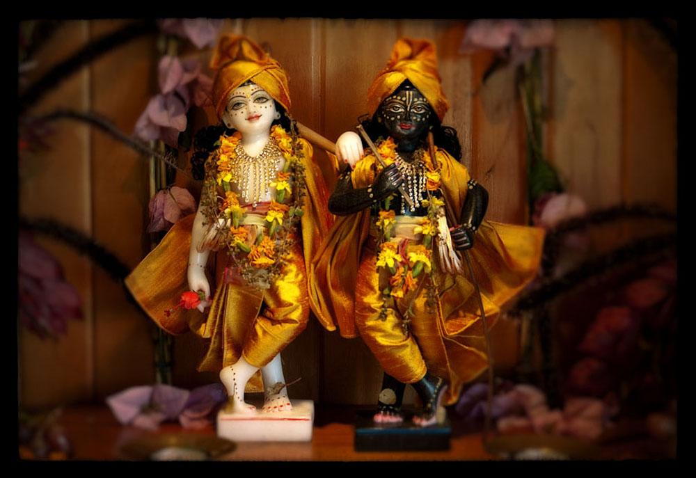 Sri Sri Dauji-Gopal